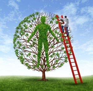 gesundheitsbaum14489053_ml